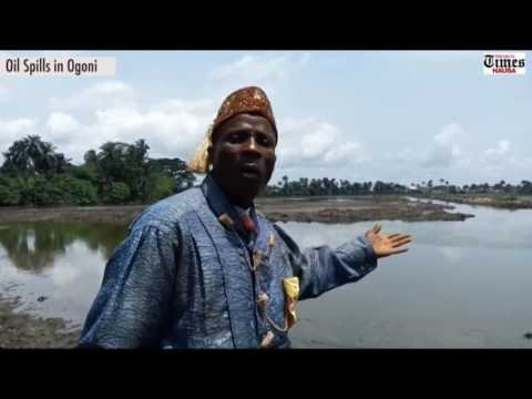 Oil spills in Ogoniland: How Eric Dooh lost his farms and investments in Goi