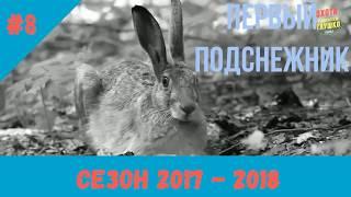 (18+) ПЕРВЫЙ ПОДСНЕЖНИК часть 1 (ОХОТА НА ЗАЙЦА # 8 ) сезон 2017 - 2018