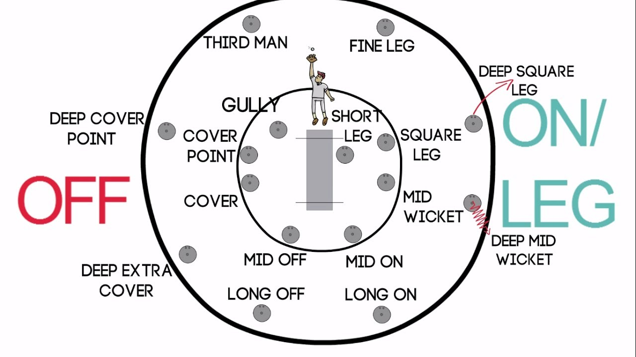 hight resolution of fielding positions in cricket for right handed batsman long on off mid wicket fine leg square leg