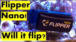 Nano Flipper Algae Scraper Review. Will it flip?