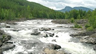 Nature of Norway: The Great River