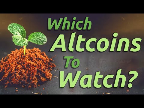 The Crypto Market Is HOT! Which Altcoins Should You Be Watching?! 👀