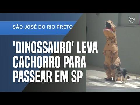 EMPRESÁRIO USA FANTASIA DE DINOSSAURO EM PASSEIO COM CACHORRO NO INTERIOR DE SP