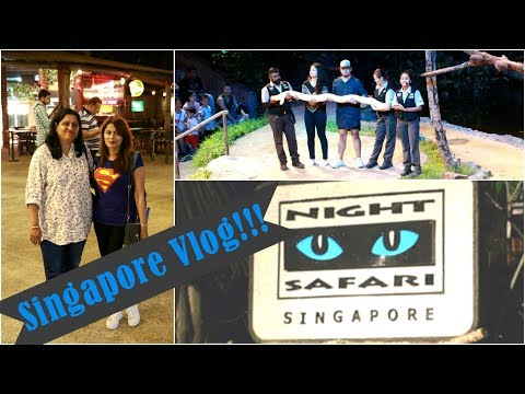 Travel Vlog : Singapore | Day 1| Landing, Night Safari | Kavya K