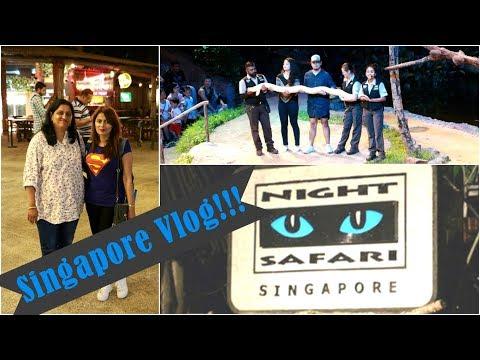Travel Vlog : Singapore | Day 1| Landing, Night Safari | Kavya K