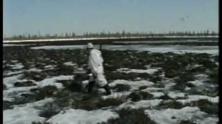 Охота на гуся на Ямале