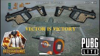 Can Vector win  in Erangel  PUBG Lite  leaving mobile emulator  Ryzen 5  Budget Gamer