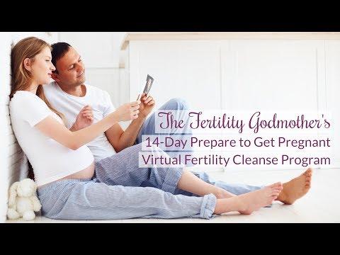 Prepare to Get Pregnant Virtual Fertility Cleanse Program