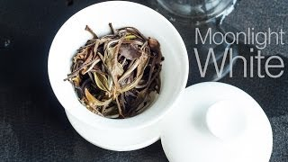 White Tea-Steep #1 Yue Guang Bai-Moonlight White Large Leaf White Tea