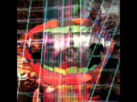 Animal Collective - Monkey Riches