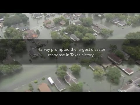 CDP Hurricane Harvey Recovery Fund - Center for Disaster Philanthropy