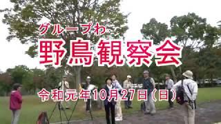 グループわ 2019年 野鳥観察会記録