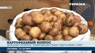 Сколько будет стоит картофель ближе к зиме?