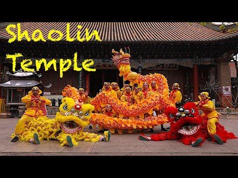 A Week In The Shaolin Temple Part I  |  Shaolin Temple Life | Yunnan Shaolin Temple (FULL HD)