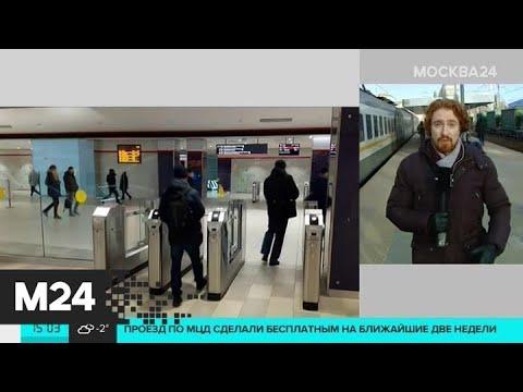 Станция Одинцово стала самой популярной на МЦД со дня запуска - Москва 24