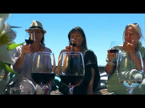 Wine Travel Chile - Exploring Chile's Wine Country