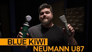 Neumann U87 vs Blue Kiwi | Voice Over Mic Comparison