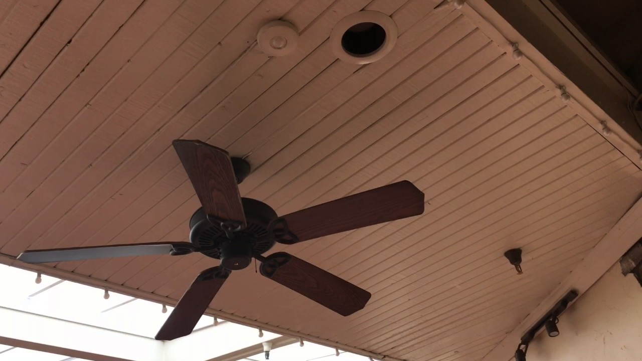 52 Quot Hampton Bay Brookhurst Amp Craftmade Cxl Ceiling Fans In