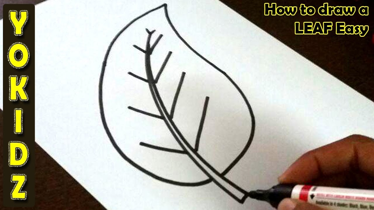 How To Draw A Leaf Easy Youtube