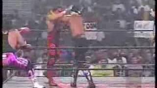 Hollywood Hogan/Bret Hart Vs. Sting/Lex Luger