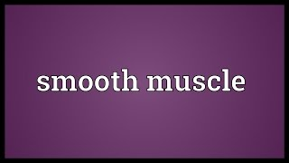 Smooth muscle Meaning