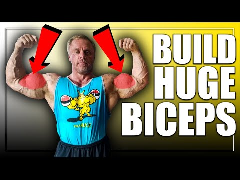 3 Types of Hammer Curls to Build *HUGE* Biceps