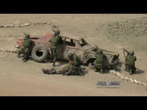 Aliados por la Seguridad Combatientes DINOES