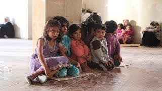 Norci na zvezi in begunci v kleti