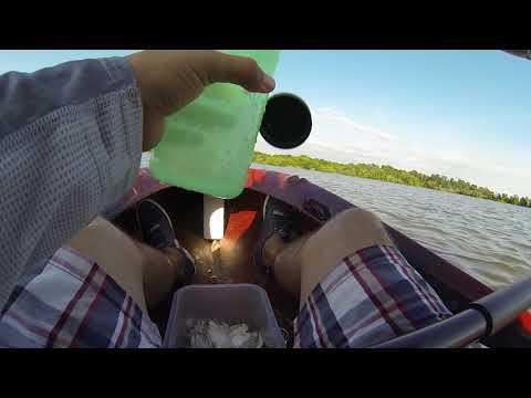 Jug Line Fishing Lake Livingston (fishing Tutorial)