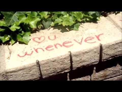I Will-The Beatles-Lyrics Video (L.V.)