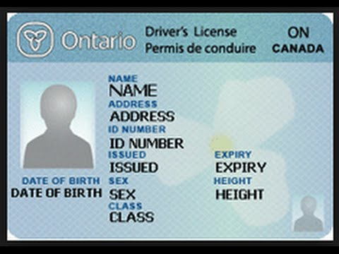 Canadian driving license in us