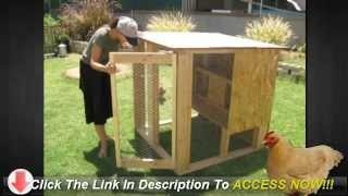 How To Build A Chicken Coop Hen House - Get It Done Right