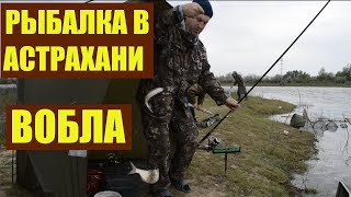 Рыбалка в Астрахани / Вобла / Уха на костре