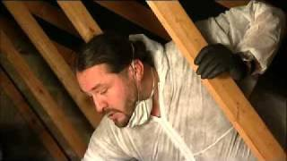 How to Insulate your loft with Space Insulation