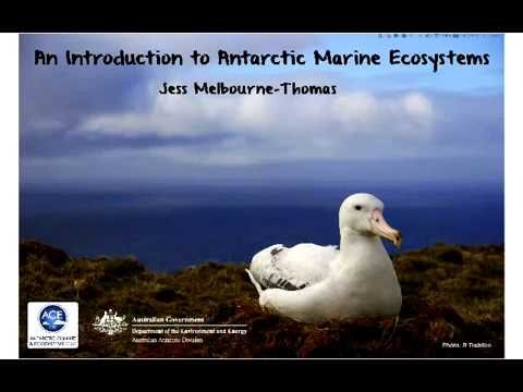 2016 Master Class: An Introduction to Antarctic Marine Ecosystems
