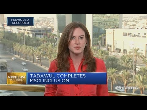 Tadawul CEO: We're ready for Saudi Aramco IPO   Capital Connection