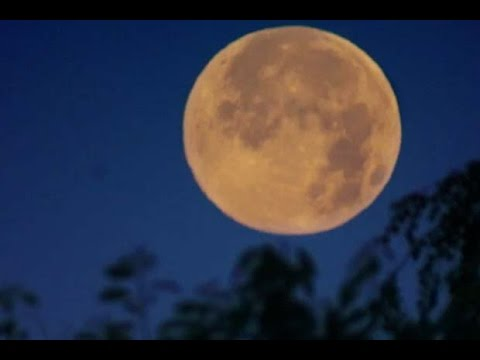 Rare 'Supermoon' In Nov. 2016 - NASA's Advice On How To Watch It | Video