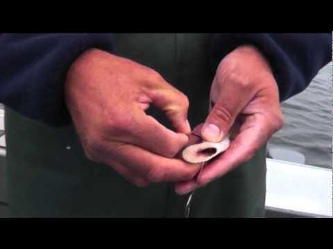 How To Rig A Cut Plug Herring