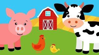 Bajki o zwierzętach dla dzieci | Pikuś i Mruczek