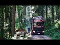 Timber Trucking in the Black Forest with Dennis | Driver's Day | Episode Eight