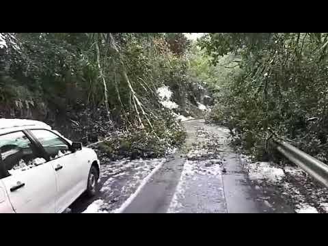 Nieve y ramas caídas en la carretera en Baralla