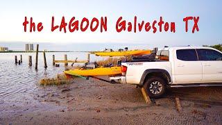 EASY FISHING SPOT in Galveston TX Catch BIG FISH - MAP & COORDINATES PROVIDED