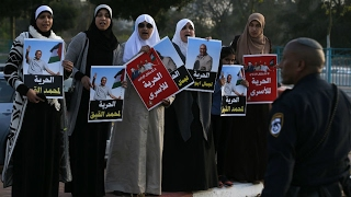 Israel  Palestinian inmates launch mass hunger strike in jails