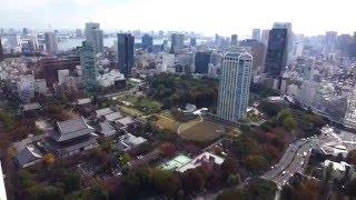 Tokyo, Japan - Tokyo Tower - Full Tour HD (2015)