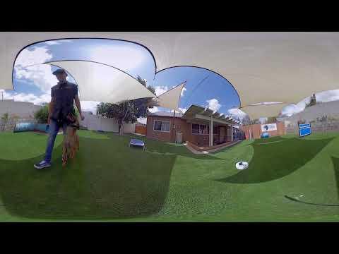 360 VIEW OF OSCAR MORA TRAINING W/ GUAPO