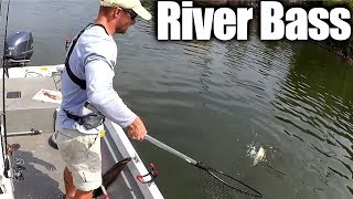 Fishing for Bass and Catfish at the Same Time - River Fishing!