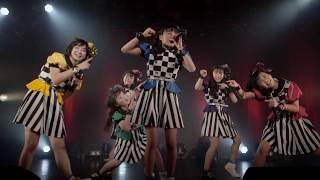 ばってん少女隊の、田舎娘が四大都市のライブハウスを巡るツアー」~4.6東京大会~より「びびび美少女」(作詞 ・作曲 ヤマモトショウ 編曲...