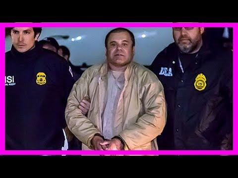 'el chapo' guzman hires top defence legal team - bbc news[BIKINI]