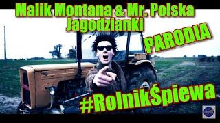 Malik Montana & Mr.Polska - Jagodzianki (PARODIA)