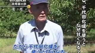 千代田化成モモ岡山-浅井)